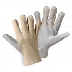 Nappa/Trikot Nappaleder-Handschuh